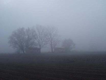 Nebbia /I