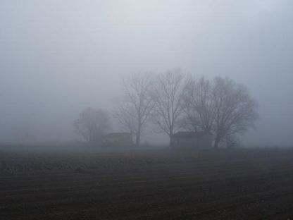 Nebbia/I