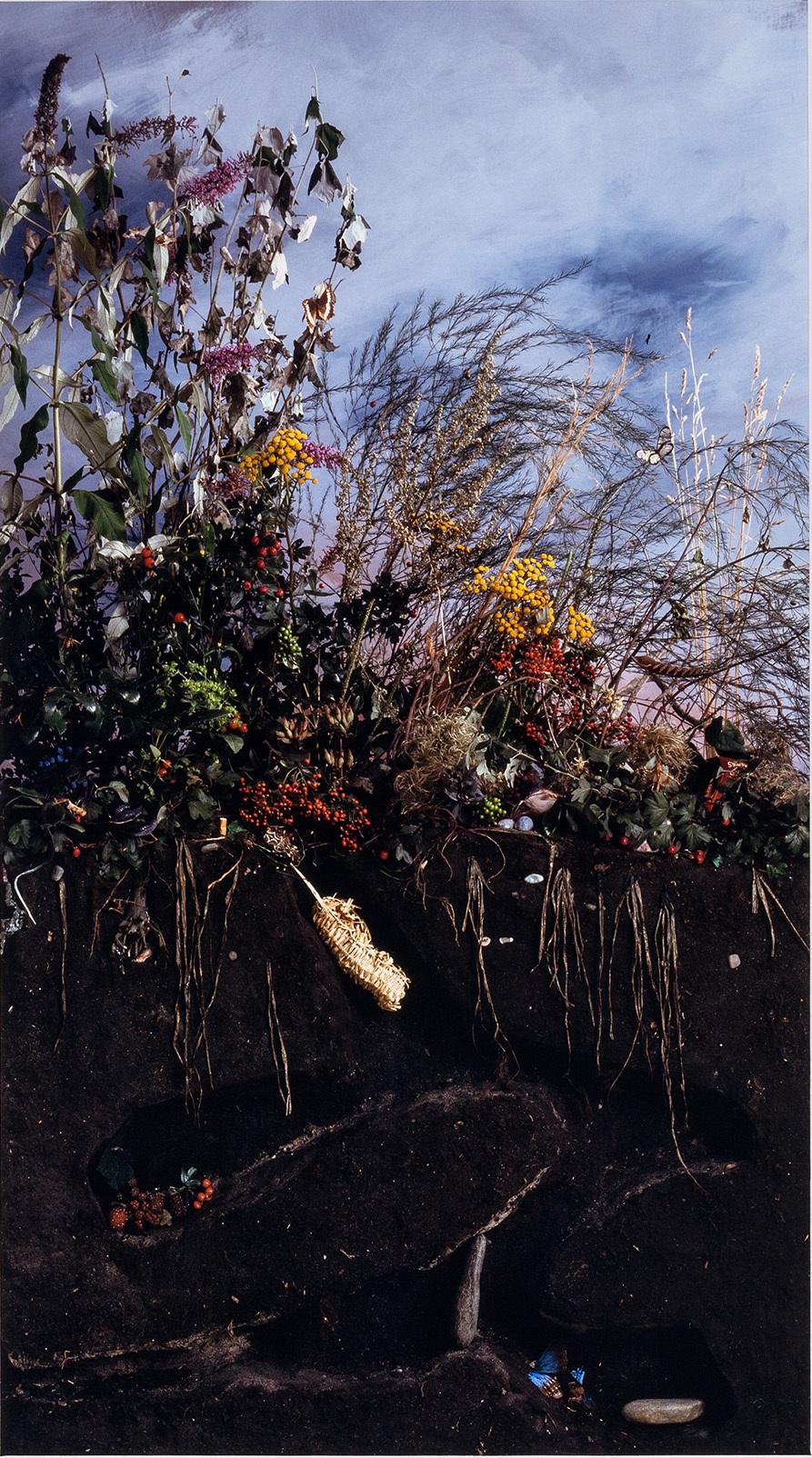 Das Grabmal des Zaunkönigs
